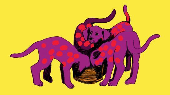Animiertes Bild von Hunden, die aus einem Napf fressen