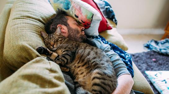 Ein Mann döst mit seiner schlafenden Katze auf dem Sofa