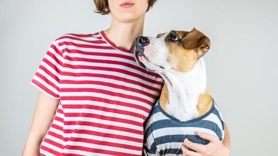 Frau mit gestreiften Oberteil hält Hund mit gestreiften Oberteil